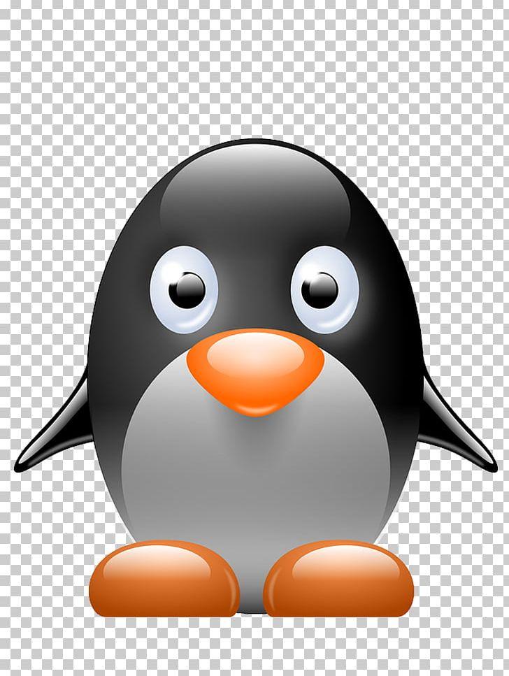 Penguin Tux Racer PNG, Clipart, Animals, Animated Film, Beak, Bird, Download Free PNG Download