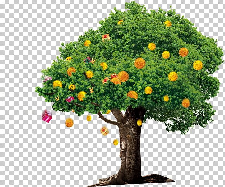 Tree Money Google S Png Clipart Alpha Channel Animals