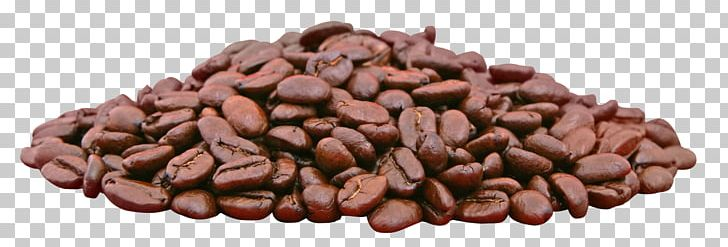 Coffee Bean Espresso Cafe PNG, Clipart, Bean, Beans, Cafe, Chocolate, Cocoa Bean Free PNG Download