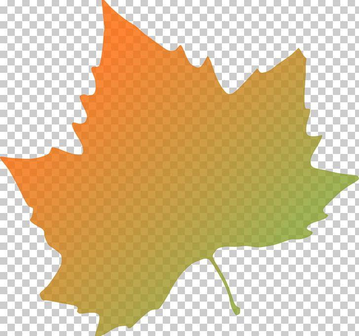 Autumn Leaf Color PNG, Clipart, Autumn, Autumn Leaf Color, Autumn Trees Clipart, Color, Download Free PNG Download