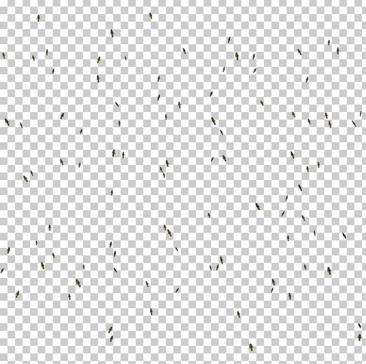 Line Point Angle Flock Font PNG, Clipart, Angle, Animals, Art, Flies, Flock Free PNG Download