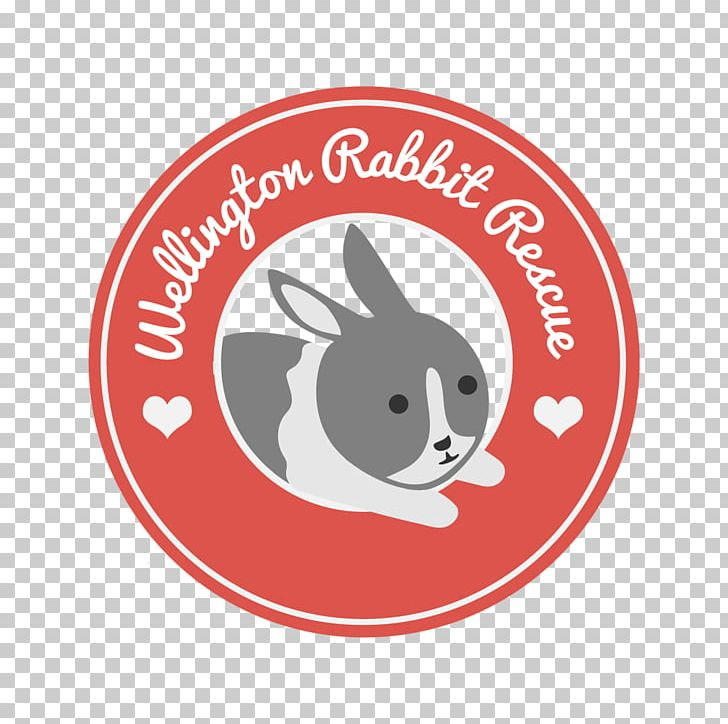 Lionhead Rabbit Pet All About Rabbits Animal PNG, Clipart, All About Rabbits, Animal, Animal Rescue Group, Animals, Brand Free PNG Download