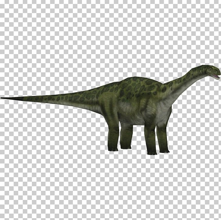 Jurassic Park: Operation Genesis Zoo Tycoon 2 Jurassic Park III: Park Builder Camarasaurus Tyrannosaurus PNG, Clipart, Animal Figure, Brachiosaurus, Camarasaurus, Dinosaur, Jurassic Free PNG Download