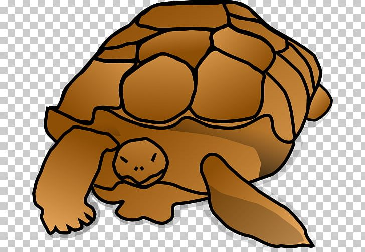 Green Sea Turtle Reptile Cartoon PNG, Clipart, Alligator Snapping