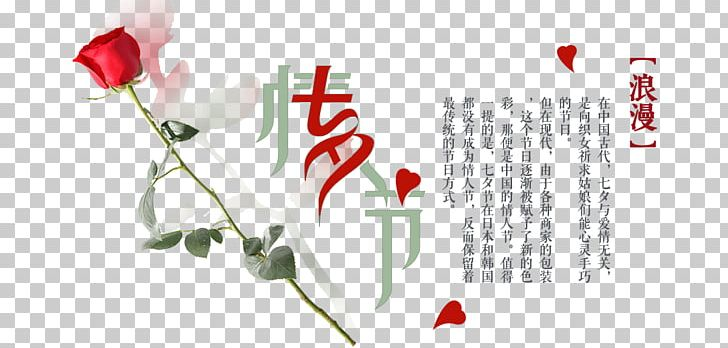 Floral Design PNG, Clipart,  Free PNG Download