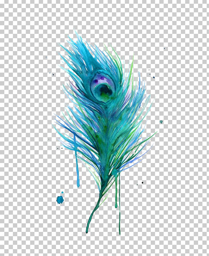 Asiatic Peafowl Feather Bird PNG, Clipart, Animals, Aqua, Art, Asiatic Peafowl, Cartoon Free PNG Download