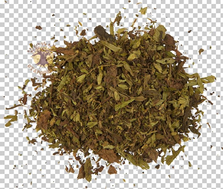 Nilgiri Tea Hōjicha Green Tea Bubble Tea PNG, Clipart, 2018 Nissan Leaf, Bubble Tea, Cafe, Food Drinks, Green Tea Free PNG Download