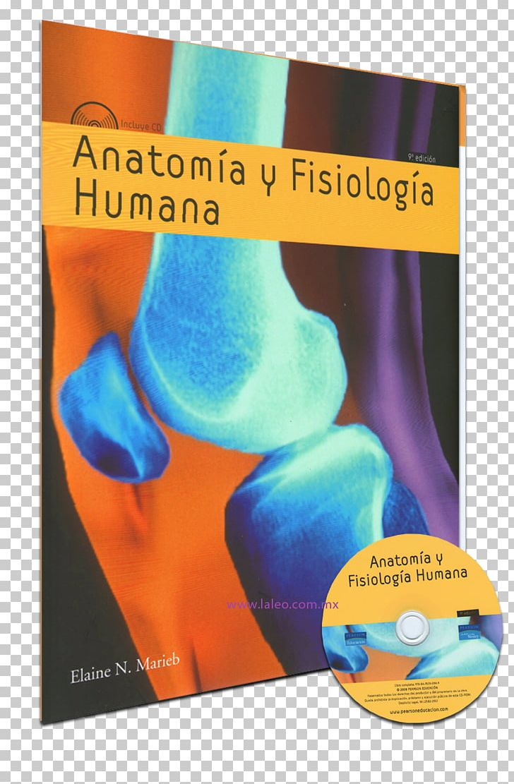 Anatomía Y Fisiología Humana (e-book) Anatomia Y Fisiologia ...