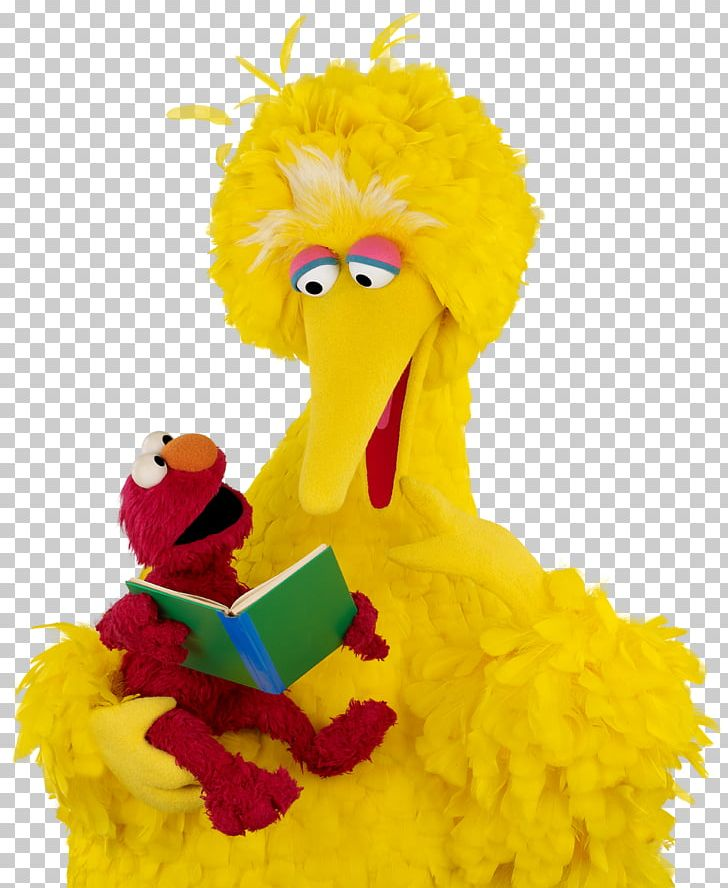 Big Bird Elmo Zoe Sesame Workshop Reading PNG, Clipart, Beak