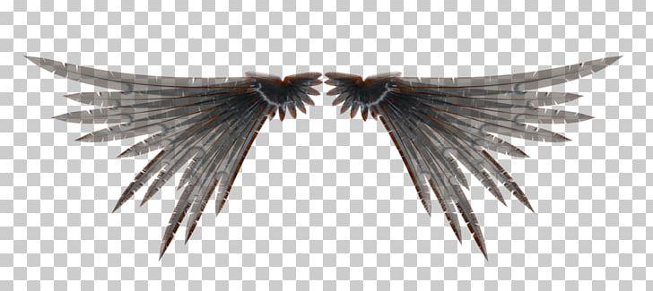 Wings 3D 3D Computer Graphics 3D Rendering PNG, Clipart, 3d
