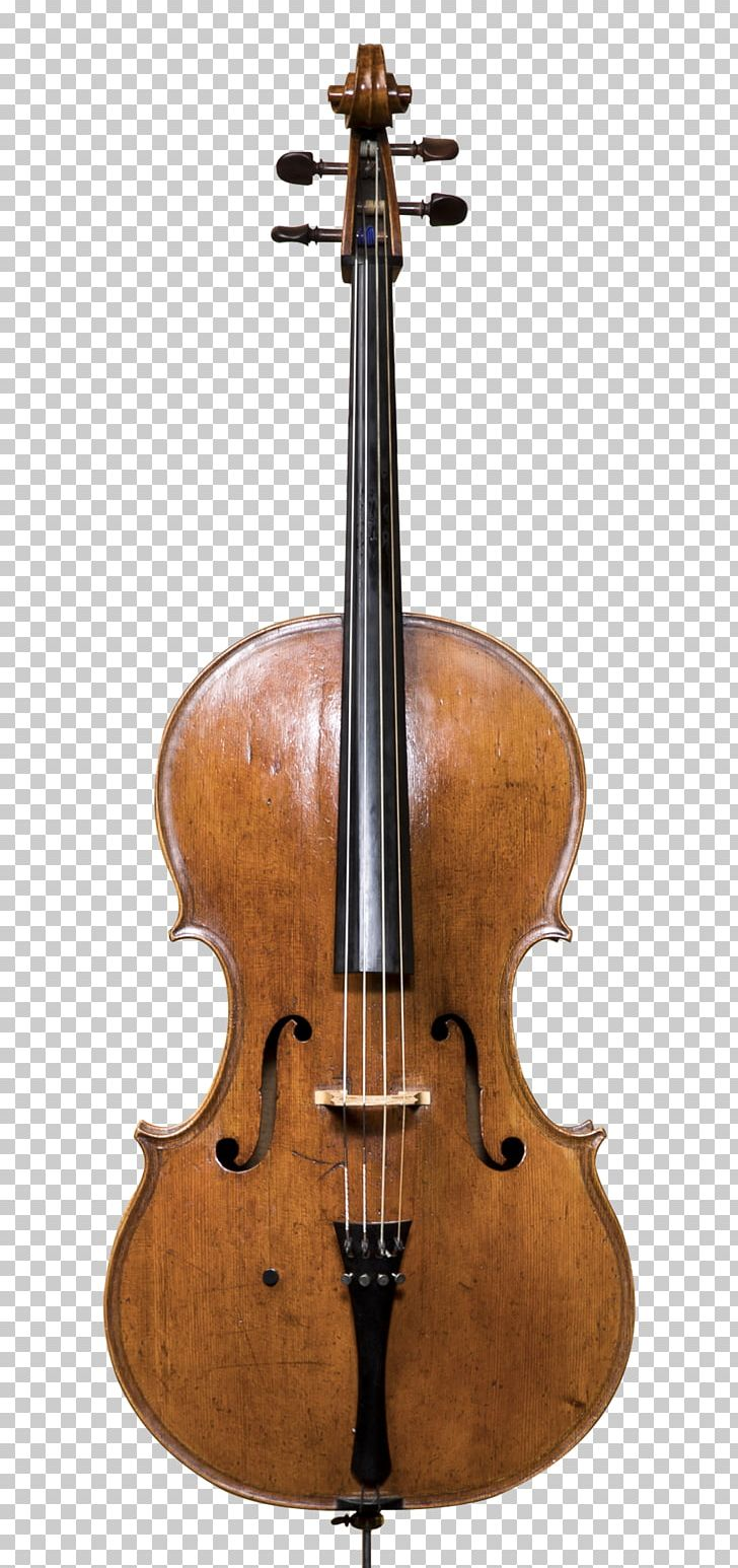 Cello String Instruments Musical Instruments Violin Double Bass PNG, Clipart, Aco, Amati, Bass, Bass Guitar, Bass Violin Free PNG Download