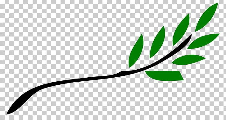 Olive Branch Petition Ancient Greece PNG, Clipart, Ancient Greece, Branch, Branches Cliparts, Brand, Green Free PNG Download
