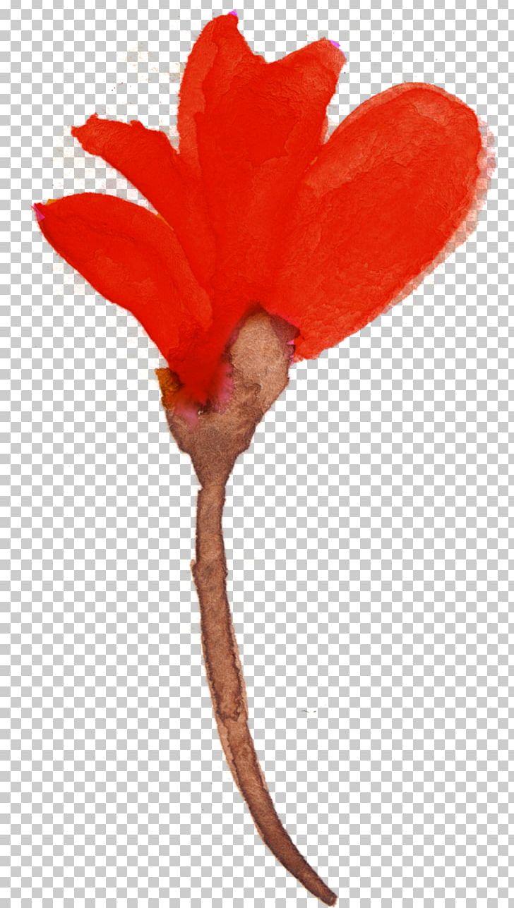 Watercolour Flowers Watercolor Painting Petal PNG, Clipart, Art Museum, Flora, Floral Design, Flower, Flowering Plant Free PNG Download