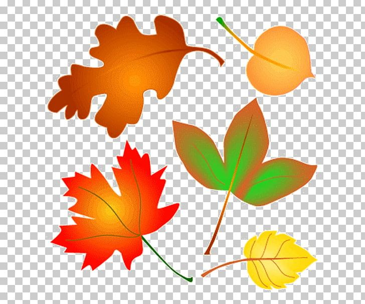 Autumn Leaf Color Open PNG, Clipart, Animated, Autumn, Autumn Leaf Color, Blog, Branch Free PNG Download