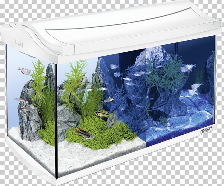 Tetra Light Emitting Diode Led Lamp Aquarium Innenfilter Png