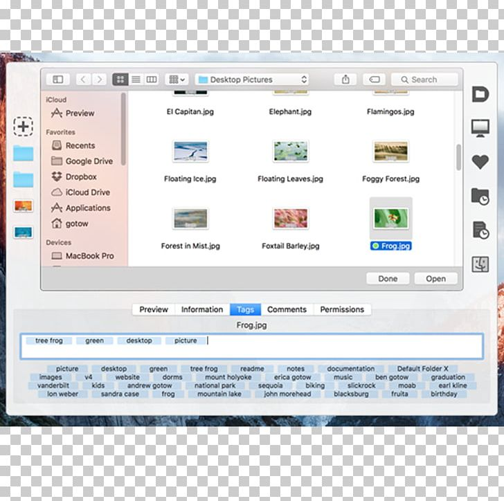 Computer Program Directory MacOS Computer Software File