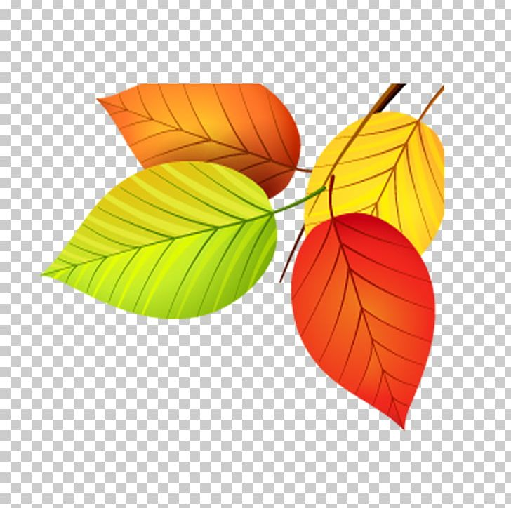 Autumn Leaf Color Euclidean PNG, Clipart, Autumn, Autumn Leaf Color, Autumn Leaves, Color, Colorful Free PNG Download