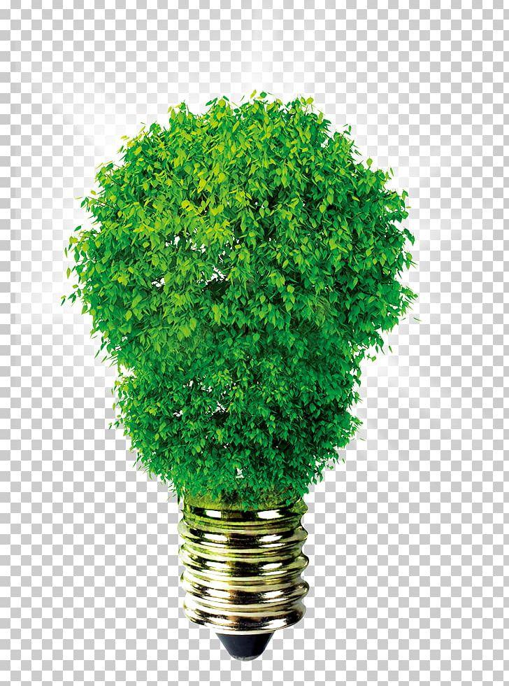 Incandescent Light Bulb Lighting Light-emitting Diode
