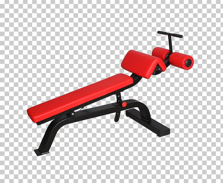 Swell Bench Fitness Centre Sit Up Exercise Equipment Physical Pdpeps Interior Chair Design Pdpepsorg
