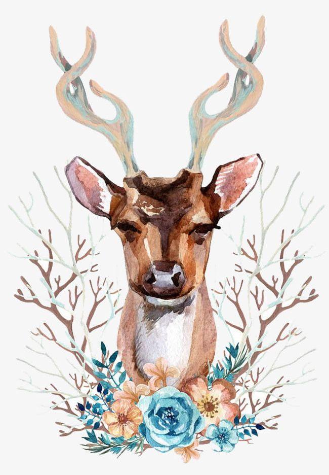 Deer watercolor. Png clipart animal animals