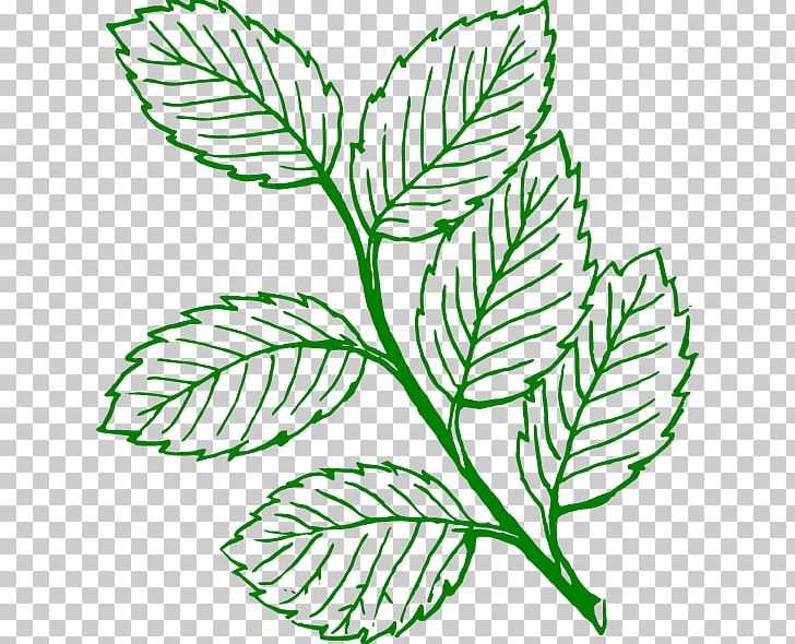 Look At Leaves Autumn Leaf Color Black And White PNG, Clipart, Art, Artwork, Autumn, Autumn Leaf Color, Black And White Free PNG Download