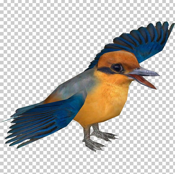 Bird Tree Kingfisher Water Kingfisher Kofiau Paradise Kingfisher Guam Kingfisher PNG, Clipart, Animals, Beak, Belted Kingfisher, Bird, Bluebird Free PNG Download