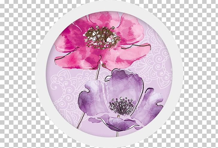 Exercise Book Dishware Petal Violet Textile Industry PNG, Clipart, Afternoon, Dishware, Exercise Book, Flower, Flowering Plant Free PNG Download