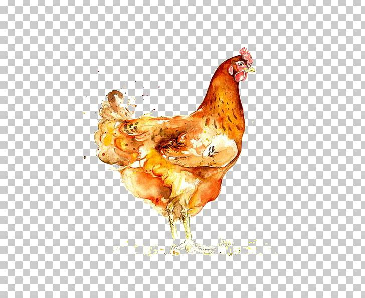 Chicken watercolor. Roast animals painting png