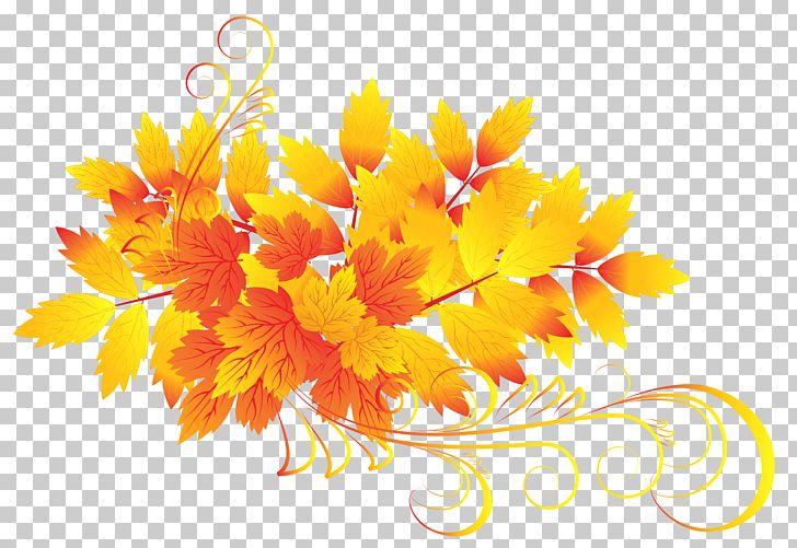 Autumn Leaf Color PNG, Clipart, Autumn, Autumn Leaf Color, Calendula, Chrysanths, Color Free PNG Download