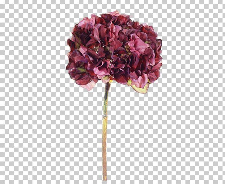 Purple Flower Violet PNG, Clipart, Art, Artificial Flower, Color, Cornales, Cut Flowers Free PNG Download