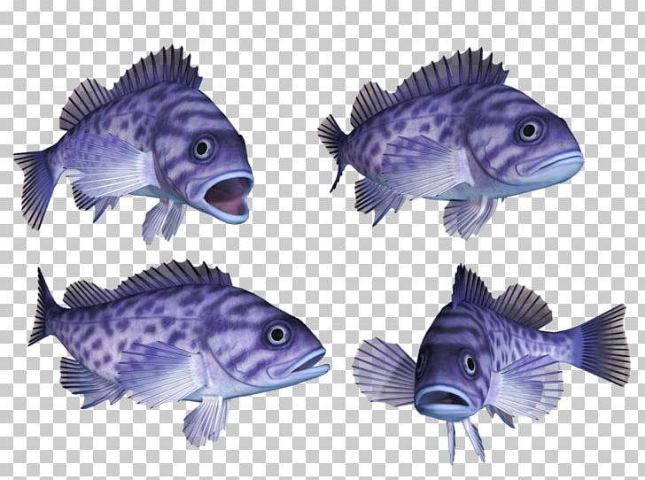 Deep Sea Fish Hagfish Coral Reef Fish Bony Fishes Marine Biology PNG, Clipart, Animals, Bony Fishes, Cobalt Blue, Coral Reef, Coral Reef Fish Free PNG Download