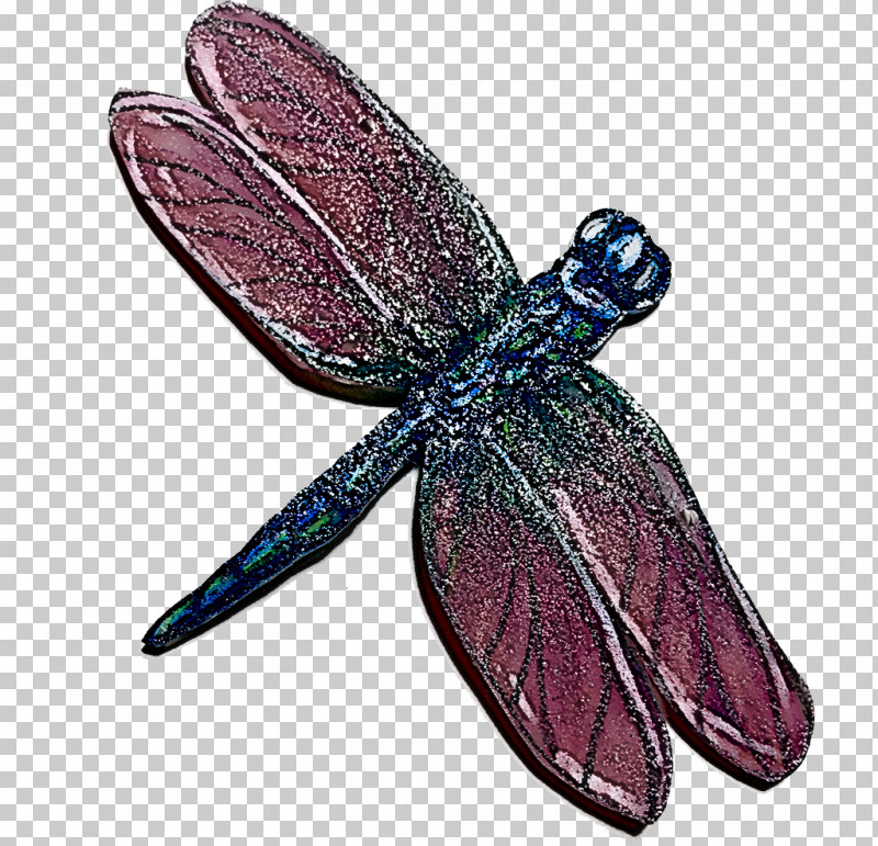 Cell Membrane Insect Butterflies Dragonfly Biological Membrane PNG, Clipart, Biological Membrane, Biology, Butterflies, Cell, Cell Membrane Free PNG Download