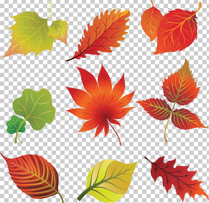 Autumn Leaf Color Art PNG, Clipart, Art, Autumn, Autumn Leaf Color, Autumn Leaves, Clip Art Free PNG Download