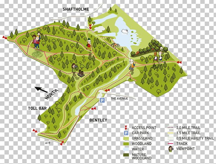 Bentley Community Woodland Shaftholme Map Trail PNG, Clipart