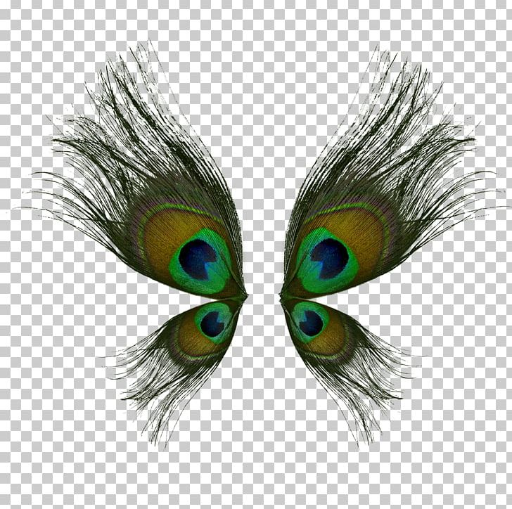 Bird Butterfly Peafowl Wing Feather PNG, Clipart, Animals, Asiatic Peafowl, Beak, Bird, Butterfly Free PNG Download