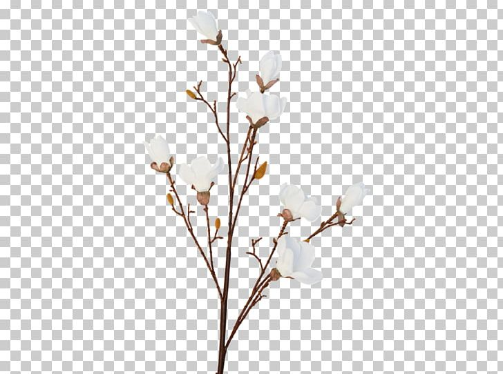 Twig Cherry Blossom Flower Spring PNG, Clipart, Blossom, Branch, Cherry, Cherry Blossom, Cut Flowers Free PNG Download