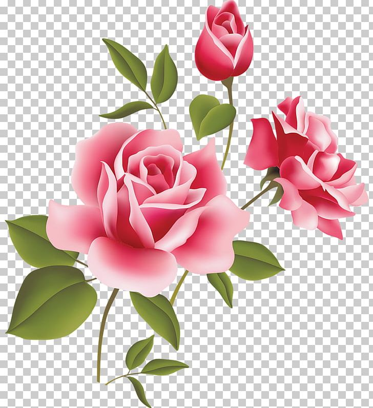 Rose Pink PNG, Clipart, Artificial Flower, Blog, Cut Flowers, Floral Design, Floristry Free PNG Download