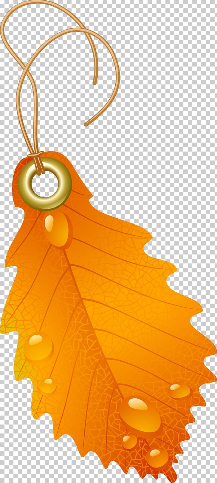 Japanese Maple Autumn Leaf Color Maple Leaf Red Maple PNG, Clipart, Autumn, Autumn Leaf Color, Boxelder Maple, Color, Fruit Free PNG Download