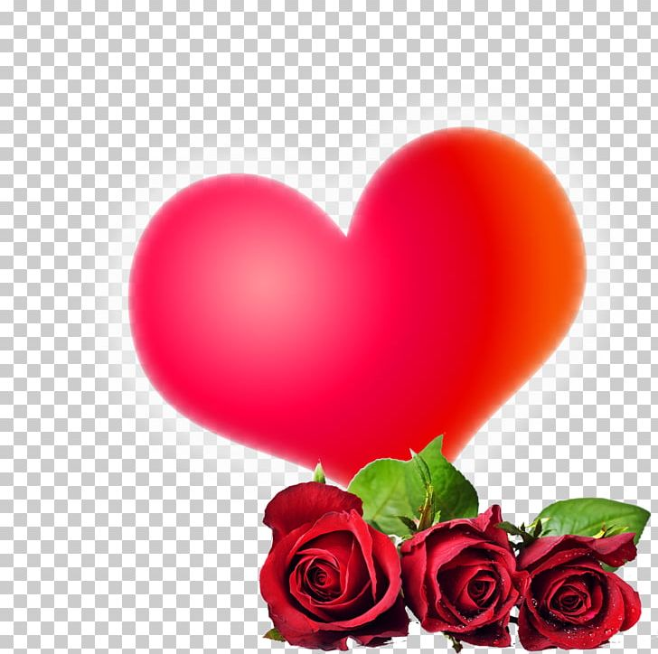 Rose Flower High Definition Video 1080p Png Clipart Decorative
