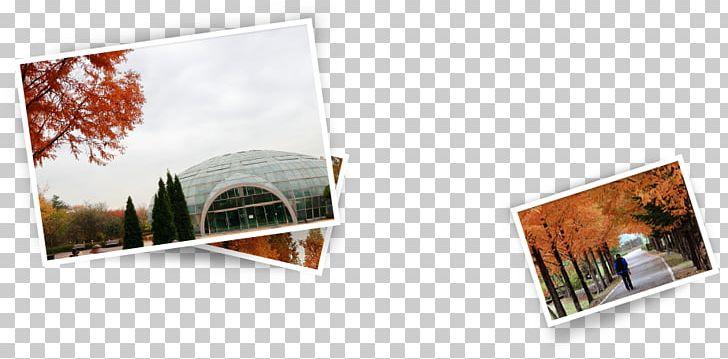 물향기수목원 Water 푸르지오 Photographic Paper PNG, Clipart, Arboretum, Bon Voyage, Brand, Christmas, Gyeonggi Province Free PNG Download