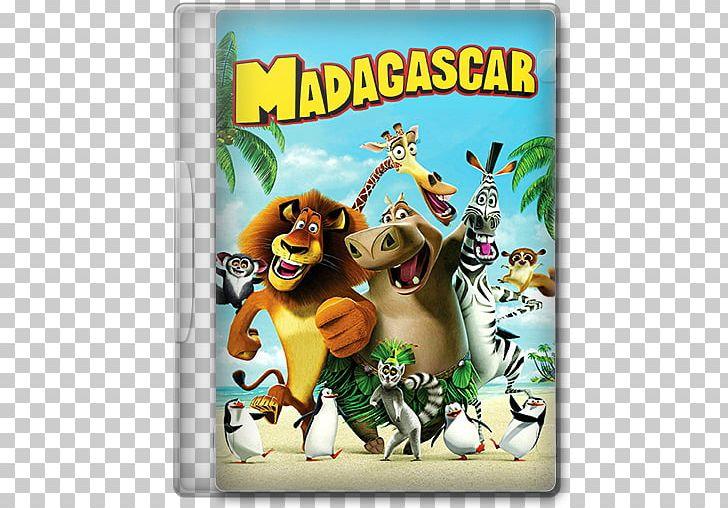 Madagascar Animated Film Adventure Film High-definition