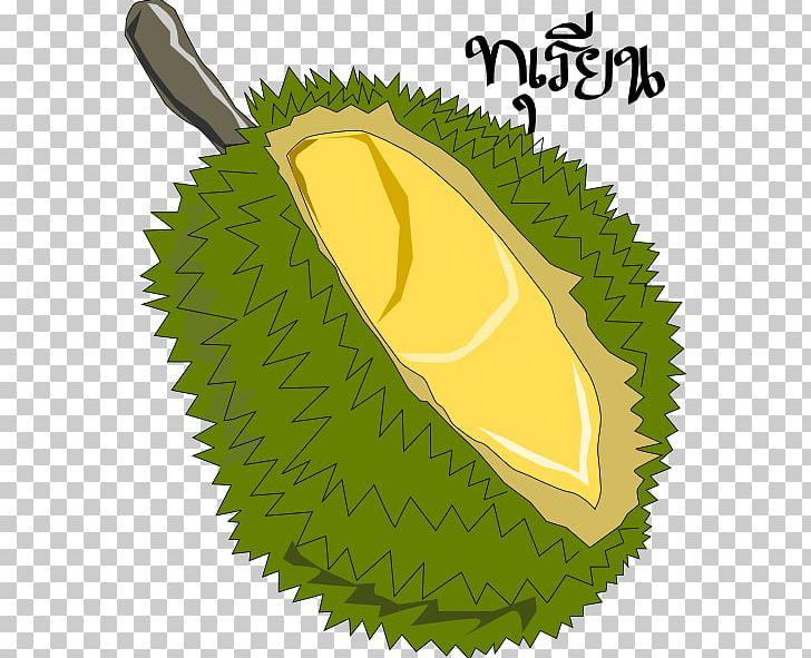 Jackfruit Durian Png Clipart Blog Clip Art Drawing