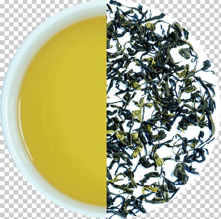 Hōjicha Nilgiri Tea Darjeeling Tea Assam Tea Green Tea PNG, Clipart, Assam Tea, Bancha, Biluochun, Ceylon Tea, Cup Free PNG Download
