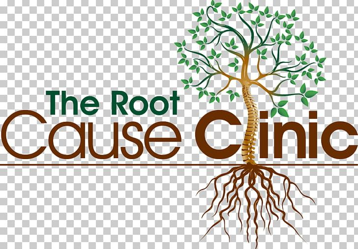 The Root Cause Clinic Thyroid Disease Physician Hospital PNG