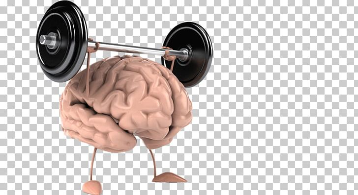 Cognitive Training Human Brain CrossFit Wonderland Human Body PNG, Clipart, Ageing, Brain, Cognitive Training, Exercise, Human Body Free PNG Download