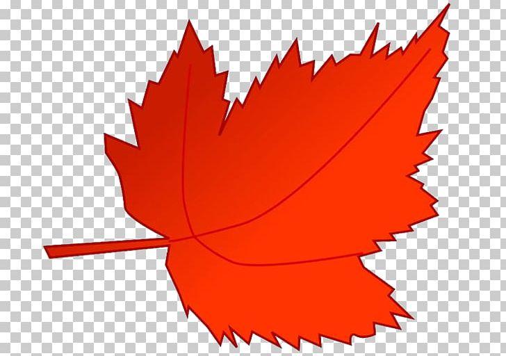 Maple Leaf Autumn Leaf Color PNG, Clipart, Art, Autumn, Autumn Leaf Color, Computer Icons, Flower Free PNG Download