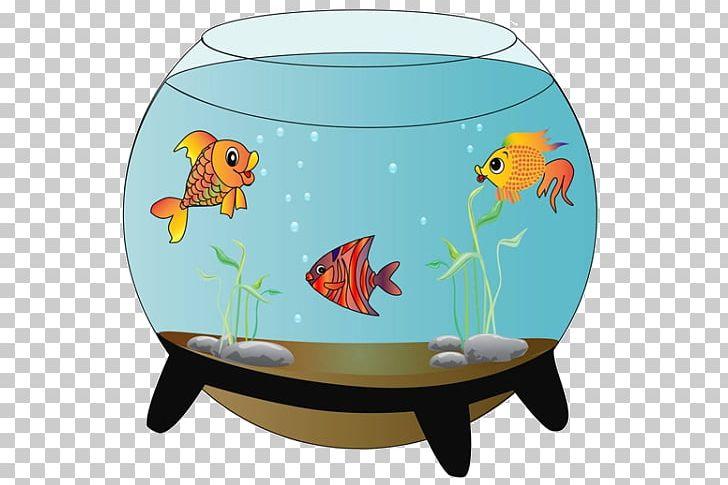Carassius Auratus Siamese Fighting Fish Aquarium Png