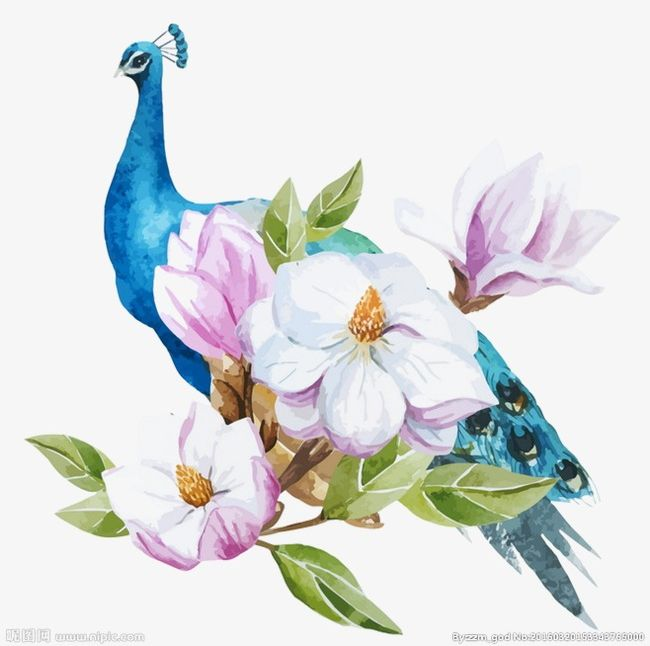 Blue Peacock PNG, Clipart, Animals, Blue, Branch, Floral Design, Flower Free PNG Download