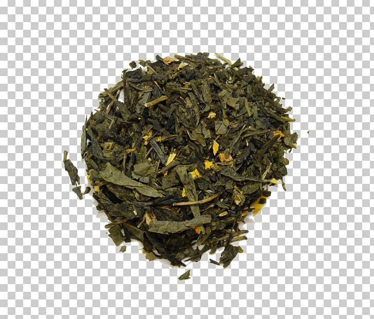 Nilgiri Tea Hōjicha Golden Monkey Tea Tea Plant PNG, Clipart, 2018 Audi Q7, Add, Asahi, Assam Tea, Audi Q7 Free PNG Download