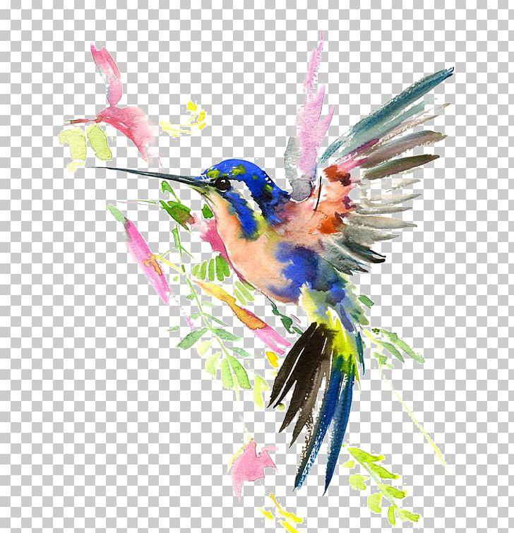 Hummingbird clip art Watercolor colibri painting instant download Still life downloadable clipart Digital watercolor bird painting